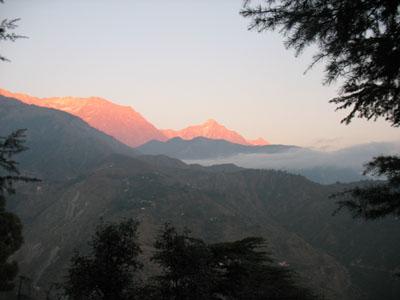 Взгляд из Дхарамсалы. Часть 1. Прибытие