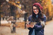 Лама Сопа Ринпоче о том, как защищать и кормить птиц