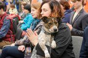 Фоторепортаж. Лама Сопа Ринпоче благоcловил в Москве домашних животных