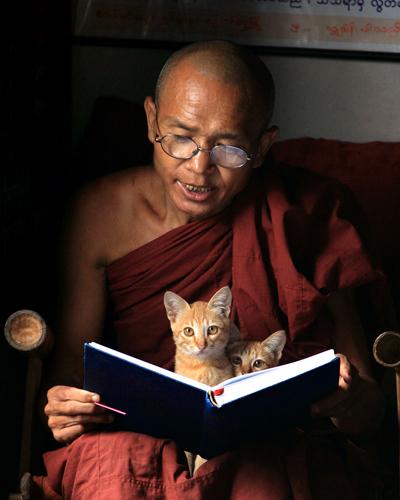 Буддизм и эволюция: новый взгляд на человеческую природу и основы нравственности