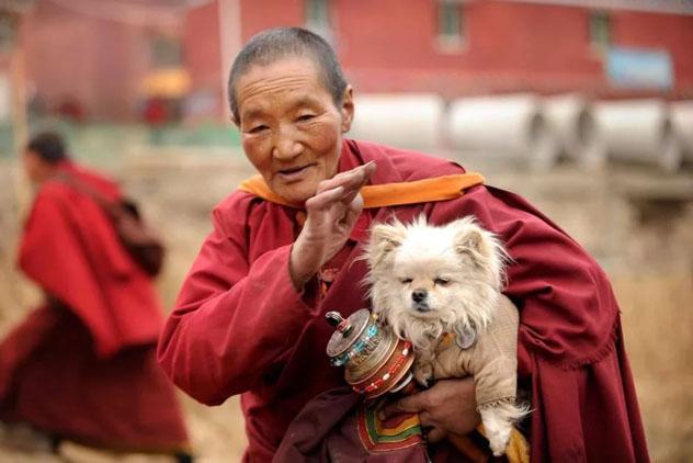 Буддизм и эволюция: новый взгляд на человеческую природу и основы нравственности. Часть 2