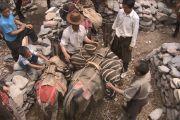 Тибетцы навьючивают лошадей мешками та-гел.