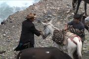 Во время остановок лошадей развьючивают.